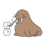 食後の歯磨きはすぐに磨く?時間が経ってから磨く?どっちがいいの?