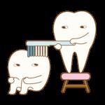歯磨きってどうやるの?意外と知らない歯磨きの基本